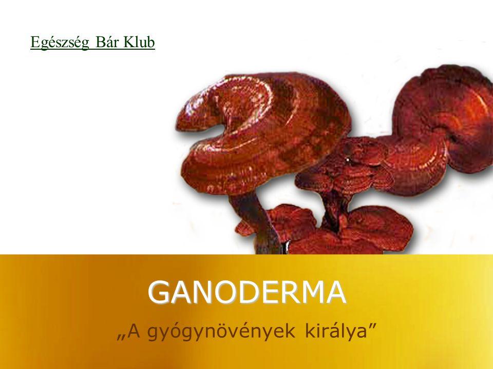 """GANODERMA """" A gyógynövények királya"""" Egészség Bár Klub"""