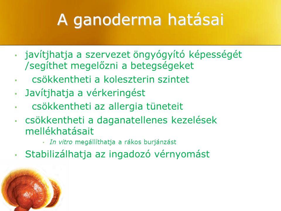 A ganoderma hatásai javítjhatja a szervezet öngyógyító képességét /segíthet megelőzni a betegségeket csökkentheti a koleszterin szintet Javítjhatja a