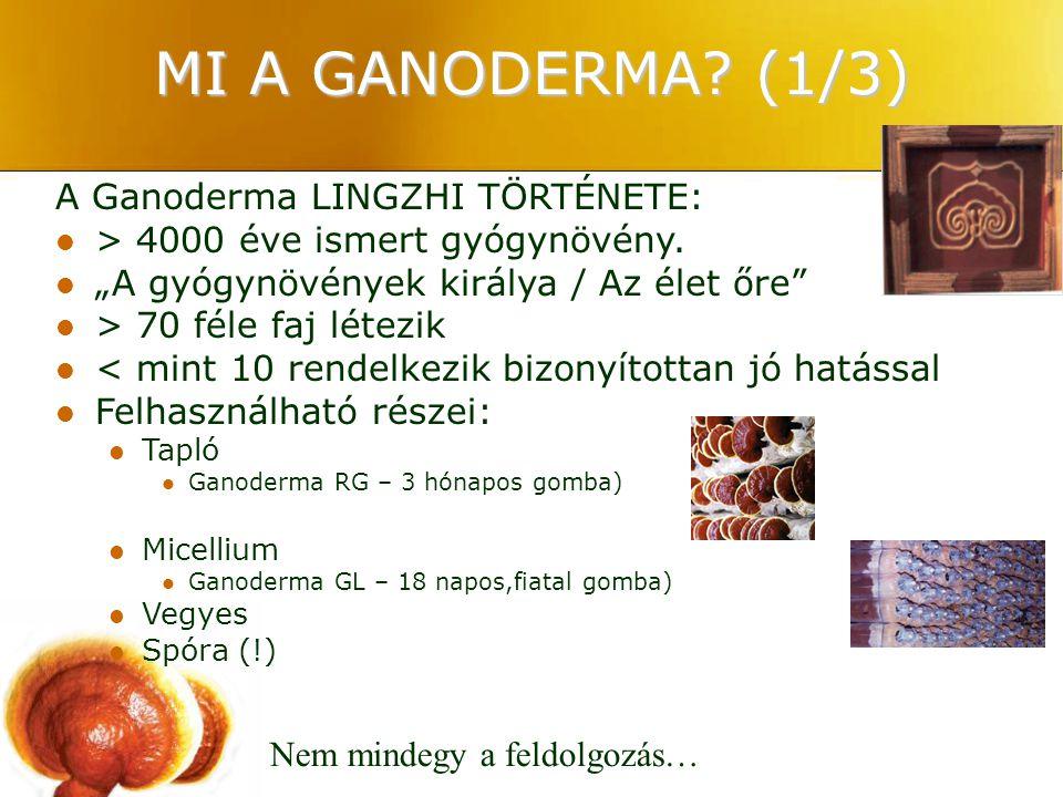 """MI A GANODERMA? (1/3) A Ganoderma LINGZHI TÖRTÉNETE: > 4000 éve ismert gyógynövény. """"A gyógynövények királya / Az élet őre"""" > 70 féle faj létezik < mi"""