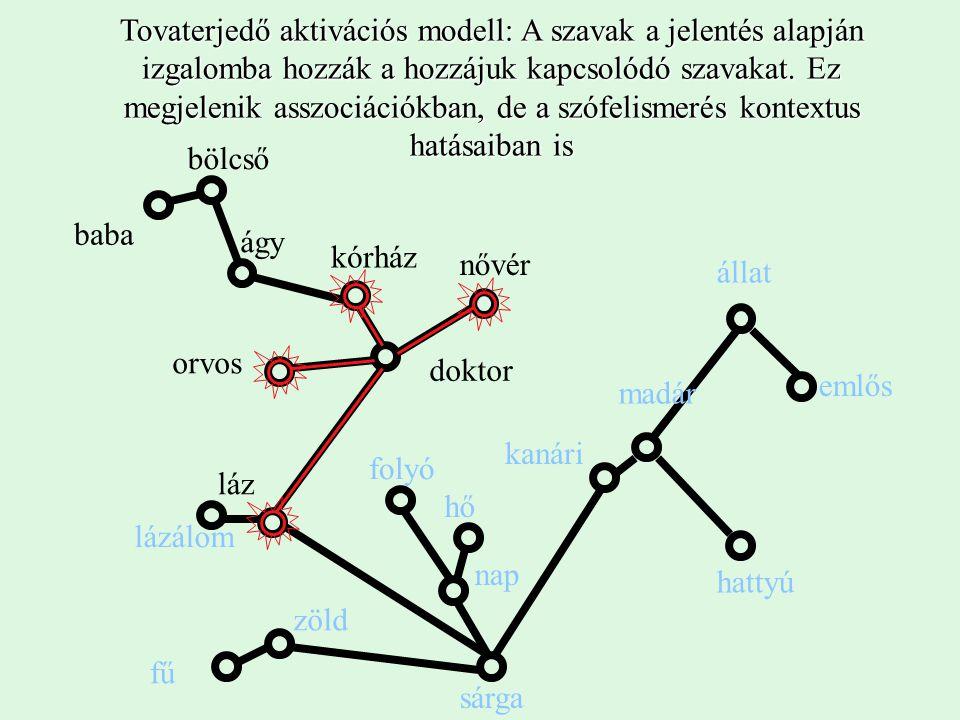 kanári madár állat hattyú emlős Tovaterjedő aktivációs modell: A szavak a jelentés alapján izgalomba hozzák a hozzájuk kapcsolódó szavakat.
