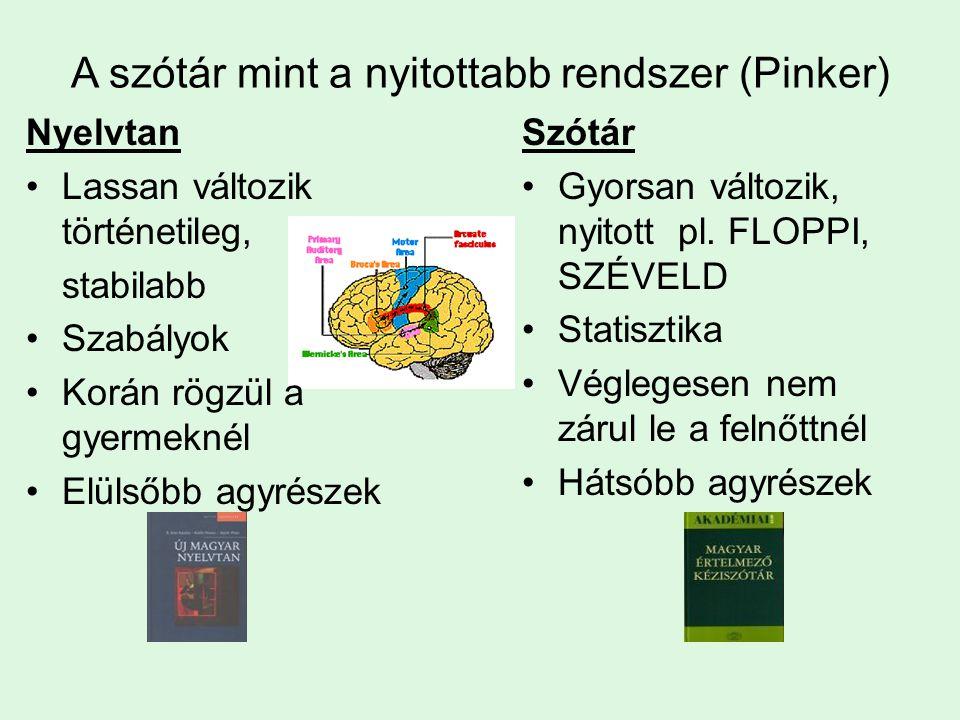 A szótár mint a nyitottabb rendszer (Pinker) Nyelvtan Lassan változik történetileg, stabilabb Szabályok Korán rögzül a gyermeknél Elülsőbb agyrészek Szótár Gyorsan változik, nyitott pl.