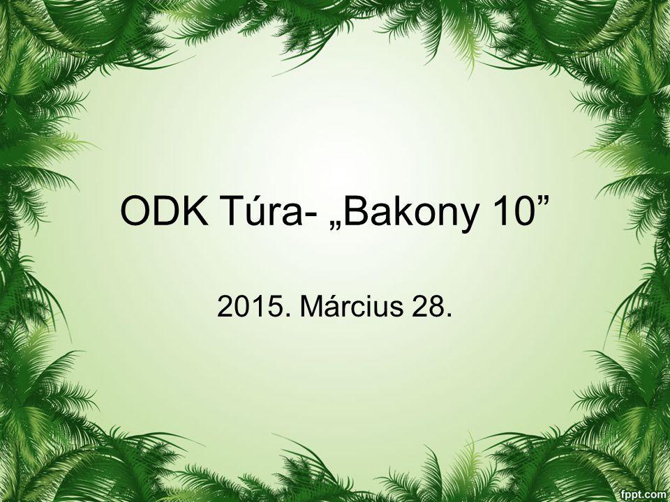"ODK Túra- ""Bakony 10 2015. Március 28."