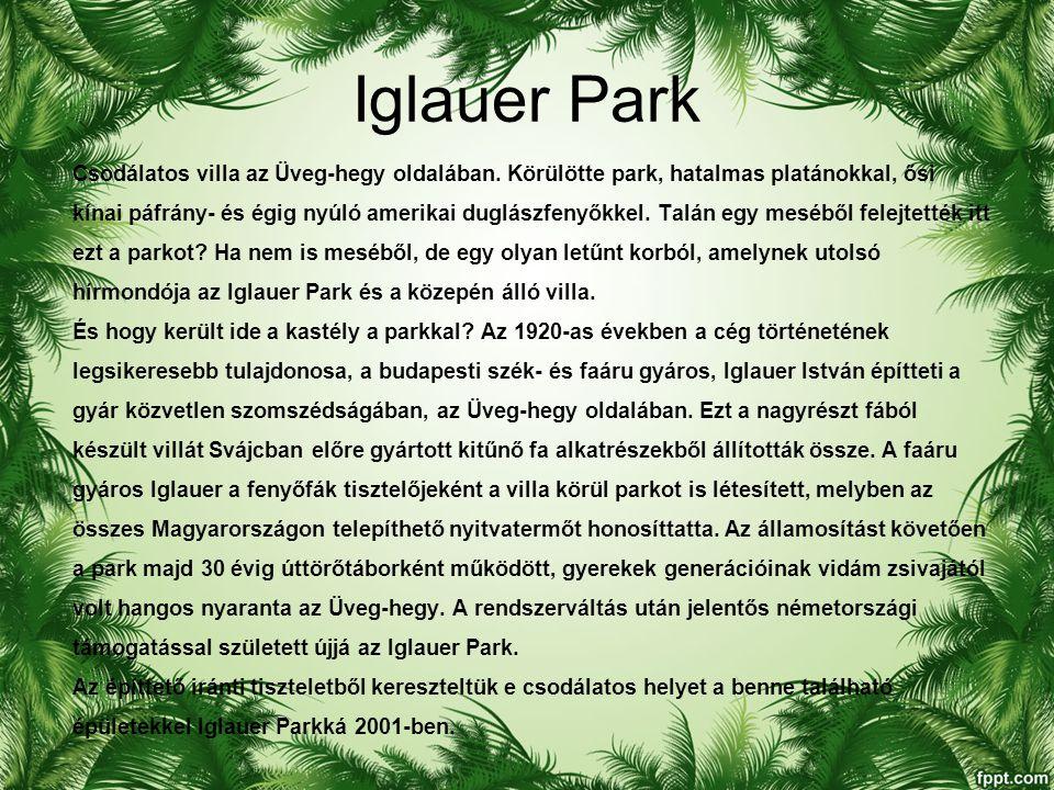 Iglauer Park Csodálatos villa az Üveg-hegy oldalában.