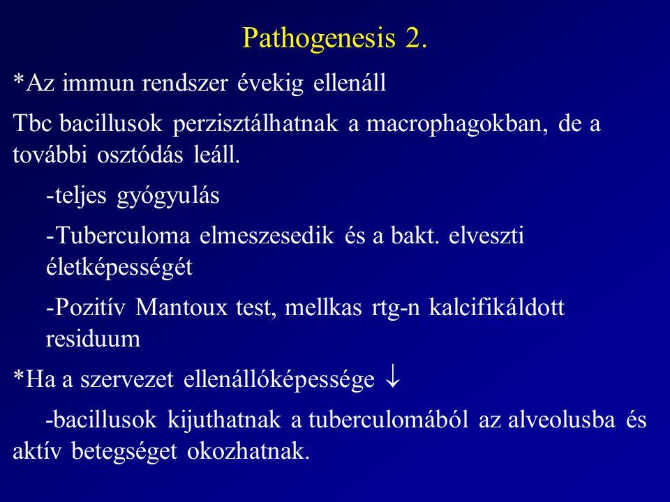 Pathogenesis 2. *Az immun rendszer évekig ellenáll Tbc bacillusok perzisztálhatnak a macrophagokban, de a további osztódás leáll. -teljes gyógyulás -T