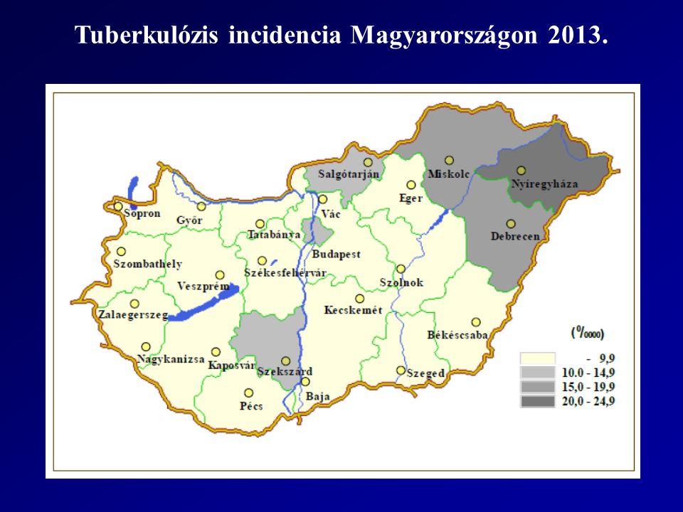 Tuberkulózis incidencia Magyarországon 2013.