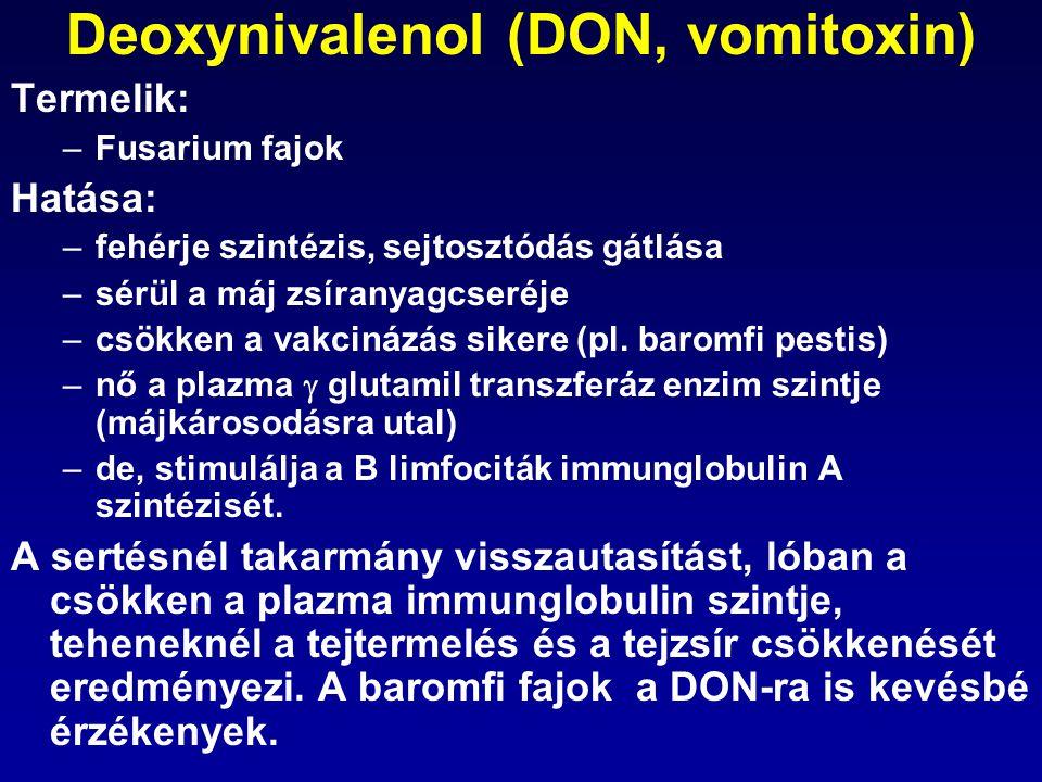 Deoxynivalenol (DON, vomitoxin) Termelik: –Fusarium fajok Hatása: –fehérje szintézis, sejtosztódás gátlása –sérül a máj zsíranyagcseréje –csökken a va