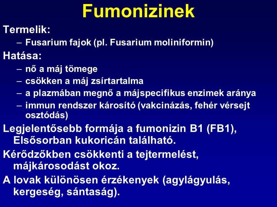 Fumonizinek Termelik: –Fusarium fajok (pl. Fusarium moliniformin) Hatása: –nő a máj tömege –csökken a máj zsírtartalma –a plazmában megnő a májspecifi