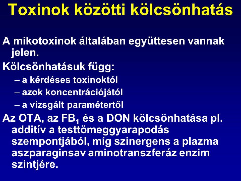 Toxinok közötti kölcsönhatás A mikotoxinok általában együttesen vannak jelen. Kölcsönhatásuk függ: –a kérdéses toxinoktól –azok koncentrációjától –a v