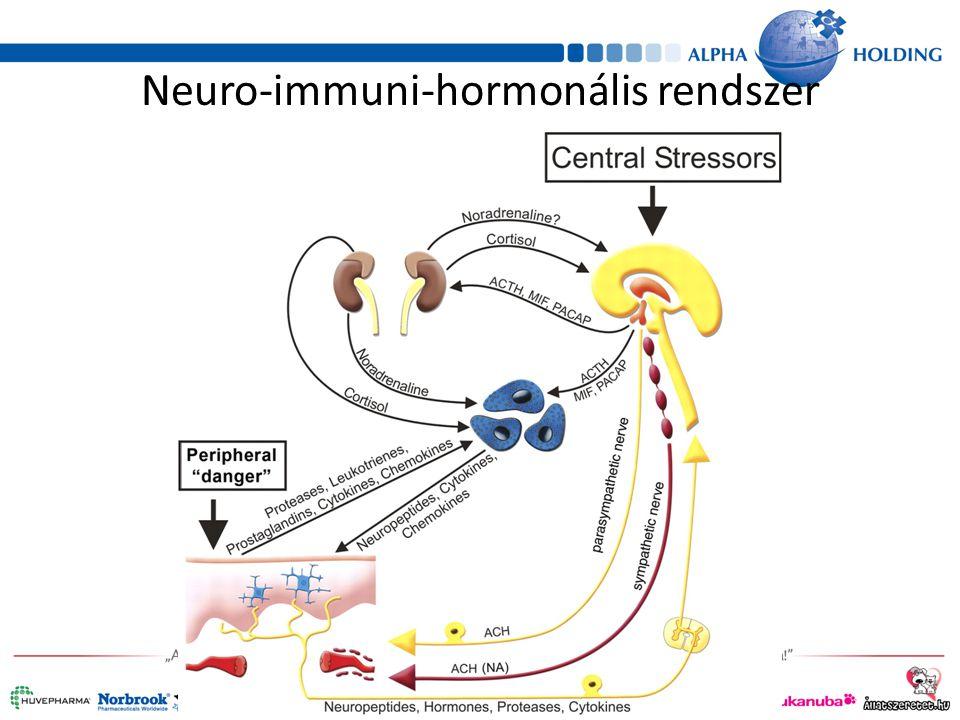 Neuro-immuni-hormonális rendszer