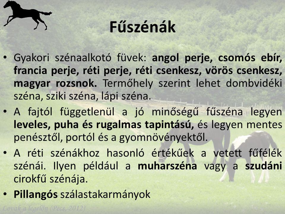 Fűszénák Gyakori szénaalkotó füvek: angol perje, csomós ebír, francia perje, réti perje, réti csenkesz, vörös csenkesz, magyar rozsnok.