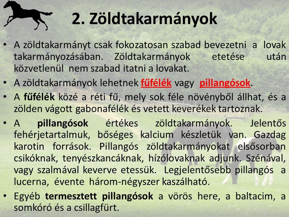 2.Zöldtakarmányok A zöldtakarmányt csak fokozatosan szabad bevezetni a lovak takarmányozásában.