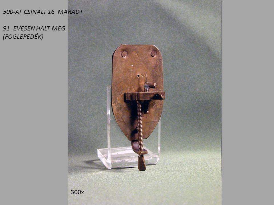 300x 500-AT CSINÁLT 16 MARADT 91ÉVESEN HALT MEG (FOGLEPEDÉK)