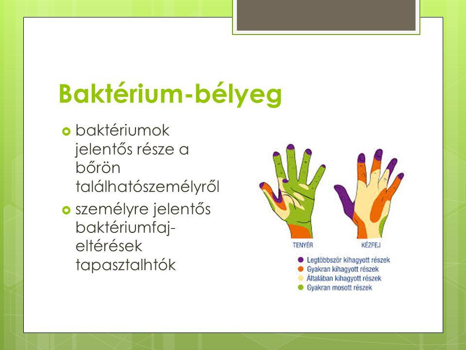 Baktérium-bélyeg  baktériumok jelentős része a bőrön találhatószemélyről  személyre jelentős baktériumfaj- eltérések tapasztalhtók