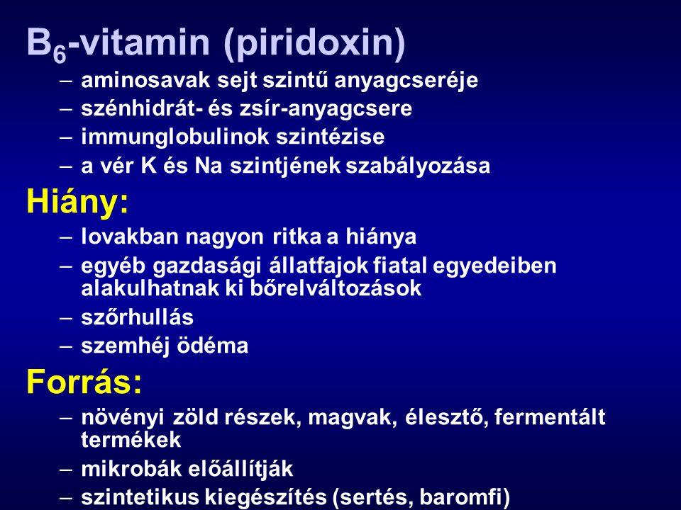 B 6 -vitamin (piridoxin) –aminosavak sejt szintű anyagcseréje –szénhidrát- és zsír-anyagcsere –immunglobulinok szintézise –a vér K és Na szintjének szabályozása Hiány: –lovakban nagyon ritka a hiánya –egyéb gazdasági állatfajok fiatal egyedeiben alakulhatnak ki bőrelváltozások –szőrhullás –szemhéj ödéma Forrás: –növényi zöld részek, magvak, élesztő, fermentált termékek –mikrobák előállítják –szintetikus kiegészítés (sertés, baromfi)