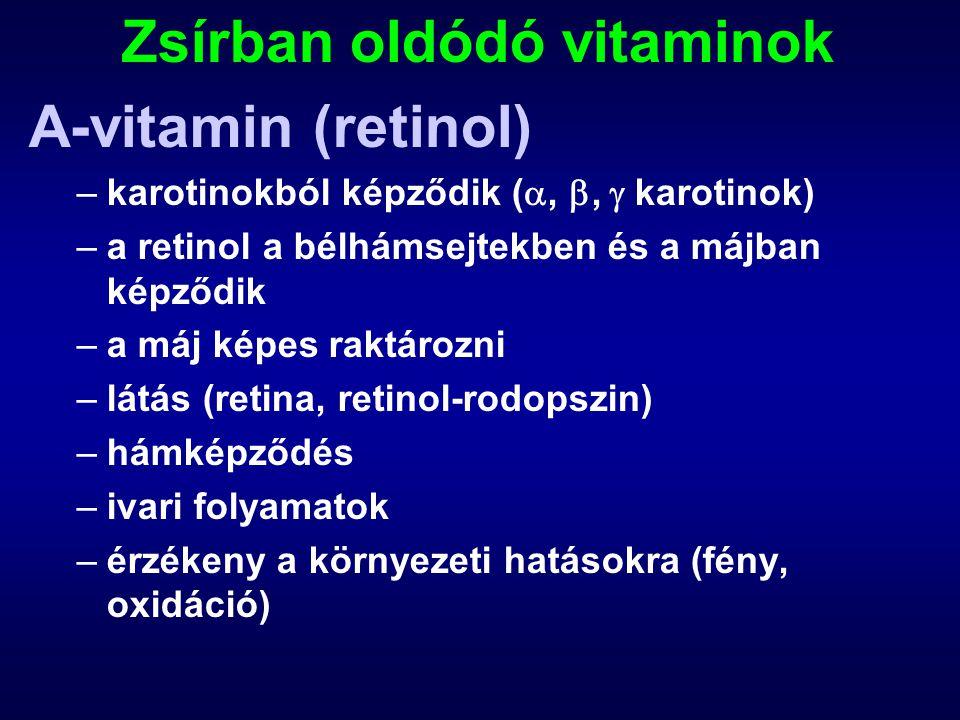 Zsírban oldódó vitaminok A-vitamin (retinol) –karotinokból képződik ( , ,  karotinok) –a retinol a bélhámsejtekben és a májban képződik –a máj képes raktározni –látás (retina, retinol-rodopszin) –hámképződés –ivari folyamatok –érzékeny a környezeti hatásokra (fény, oxidáció)