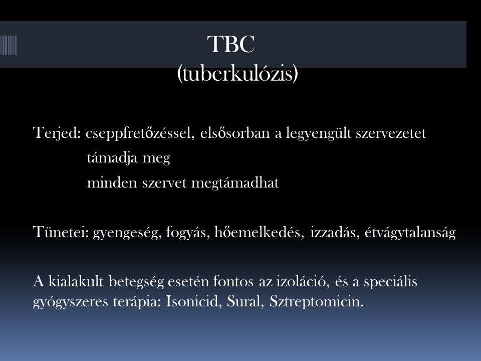 TBC (tuberkulózis) Terjed: cseppfret ő zéssel, els ő sorban a legyengült szervezetet támadja meg minden szervet megtámadhat Tünetei: gyengeség, fogyás, h ő emelkedés, izzadás, étvágytalanság A kialakult betegség esetén fontos az izoláció, és a speciális gyógyszeres terápia: Isonicid, Sural, Sztreptomicin.