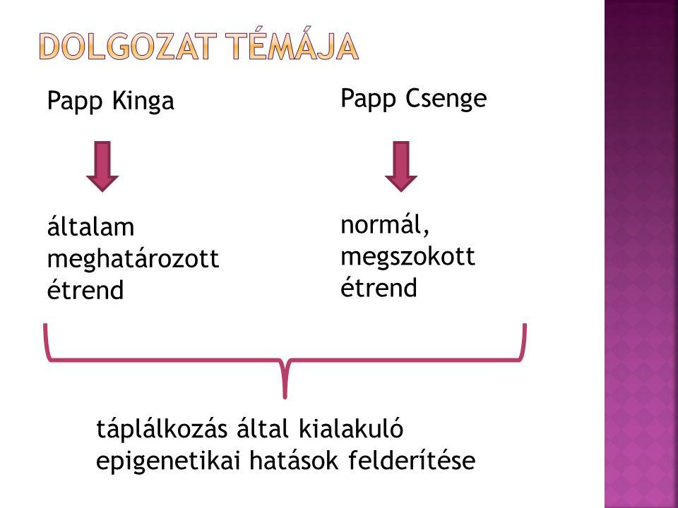 Papp Kinga általam meghatározott étrend Papp Csenge normál, megszokott étrend táplálkozás által kialakuló epigenetikai hatások felderítése