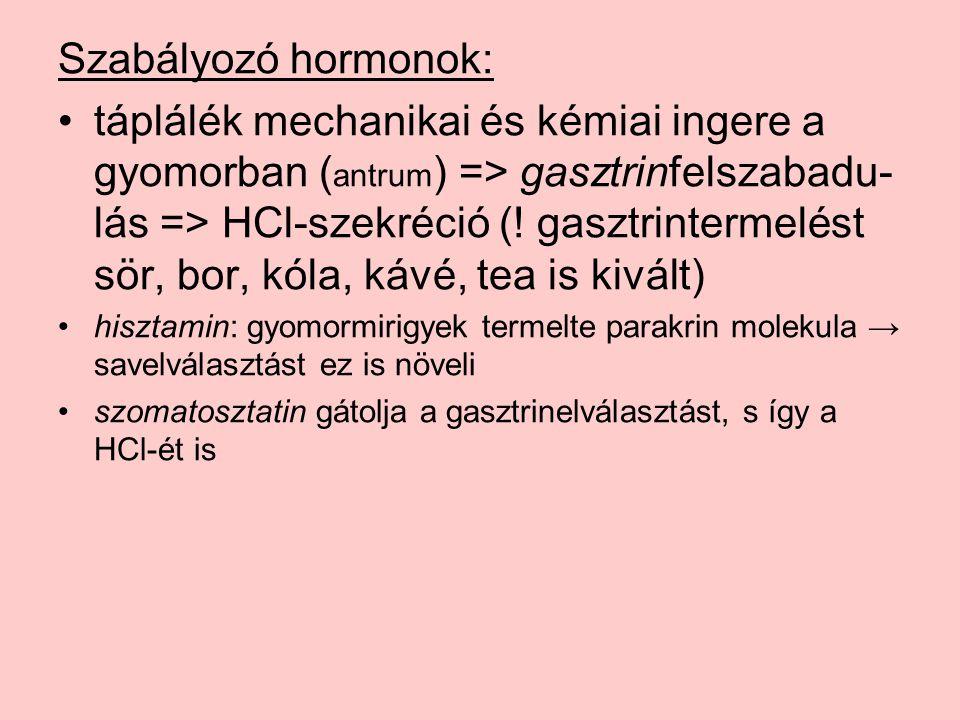 Szabályozó hormonok: táplálék mechanikai és kémiai ingere a gyomorban ( antrum ) => gasztrinfelszabadu- lás => HCl-szekréció (.