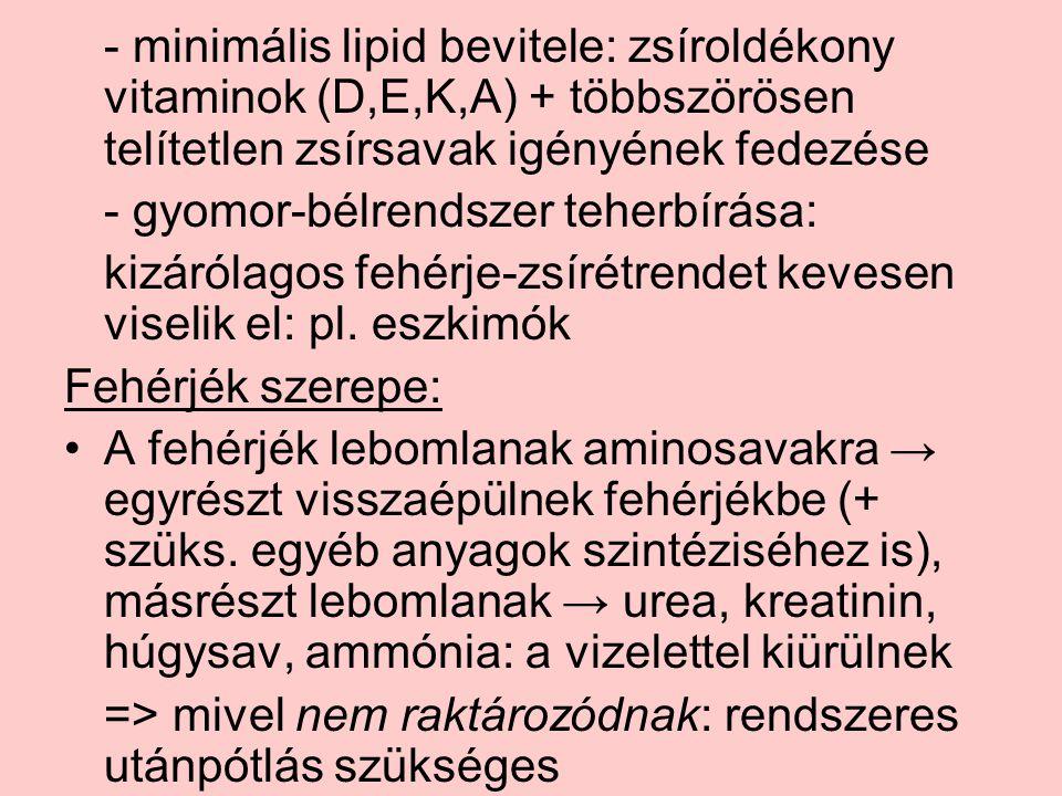 - minimális lipid bevitele: zsíroldékony vitaminok (D,E,K,A) + többszörösen telítetlen zsírsavak igényének fedezése - gyomor-bélrendszer teherbírása: kizárólagos fehérje-zsírétrendet kevesen viselik el: pl.