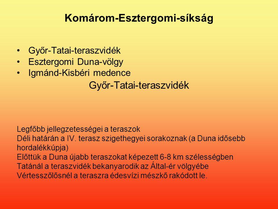 Komárom-Esztergomi-síkság Győr-Tatai-teraszvidék Esztergomi Duna-völgy Igmánd-Kisbéri medence Győr-Tatai-teraszvidé k Legfőbb jellegzetességei a teraszok Déli határán a IV.