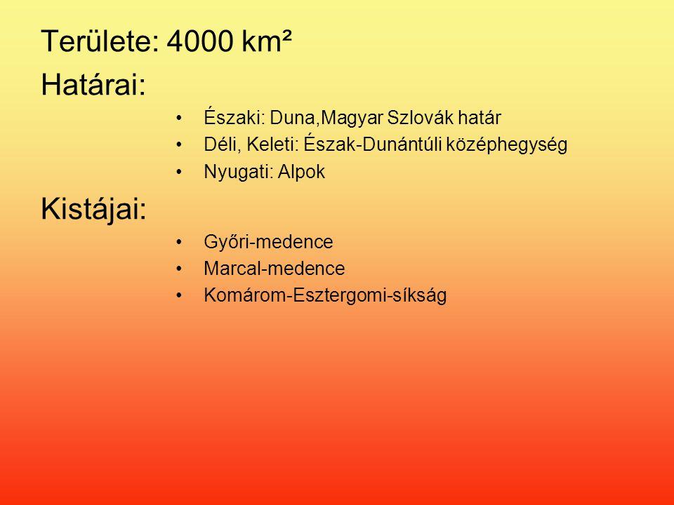Területe: 4000 km² Határai: Északi: Duna,Magyar Szlovák határ Déli, Keleti: Észak-Dunántúli középhegység Nyugati: Alpok Kistájai: Győri-medence Marcal