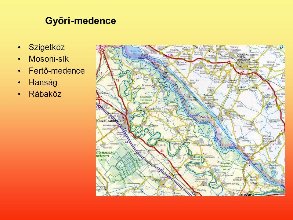 Győri-medence Szigetköz Mosoni-sík Fertő-medence Hanság Rábaköz