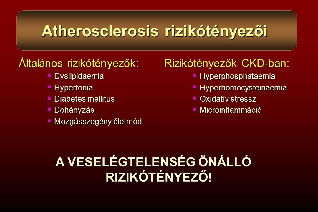 Általános rizikótényezők:  Dyslipidaemia  Hypertonia  Diabetes mellitus  Dohányzás  Mozgásszegény életmód Rizikótényezők CKD-ban:  Hyperphosphataemia  Hyperhomocysteinaemia  Oxidatív stressz  Microinflammáció Atherosclerosis rizikótényezői A VESELÉGTELENSÉG ÖNÁLLÓ RIZIKÓTÉNYEZŐ!