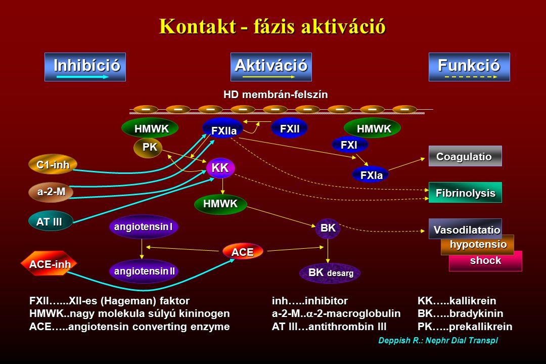 PK shock hypotensio FXI FXII…...XII-es (Hageman) faktorinh…..inhibitorKK…..kallikrein HMWK..nagy molekula súlyú kininogena-2-M..