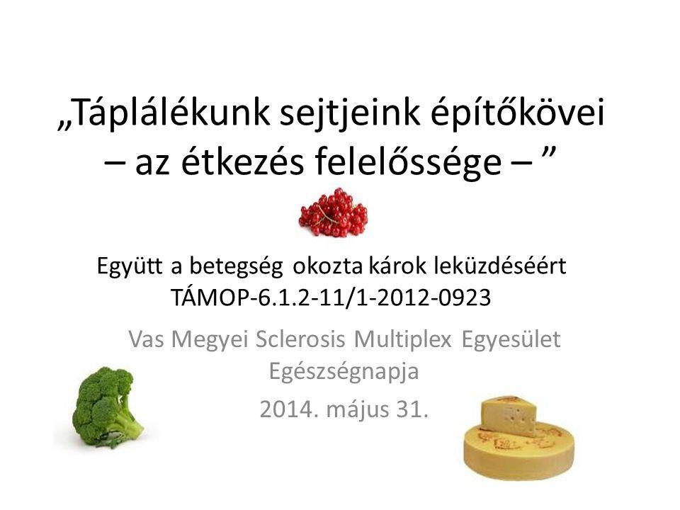 """""""Táplálékunk sejtjeink építőkövei – az étkezés felelőssége – """" Együtt a betegség okozta károk leküzdéséért TÁMOP-6.1.2-11/1-2012-0923 Vas Megyei Scler"""