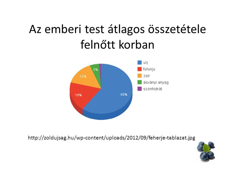 Az emberi test átlagos összetétele felnőtt korban http://zoldujsag.hu/wp-content/uploads/2012/09/feherje-tablazat.jpg