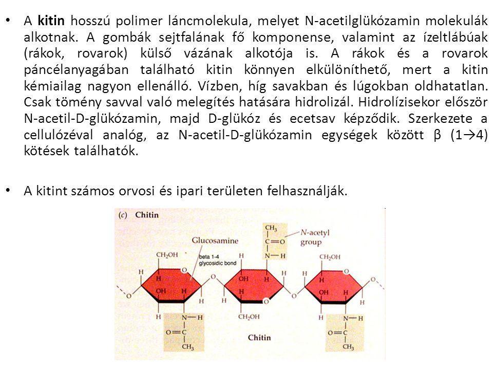 A kitin hosszú polimer láncmolekula, melyet N-acetilglükózamin molekulák alkotnak.