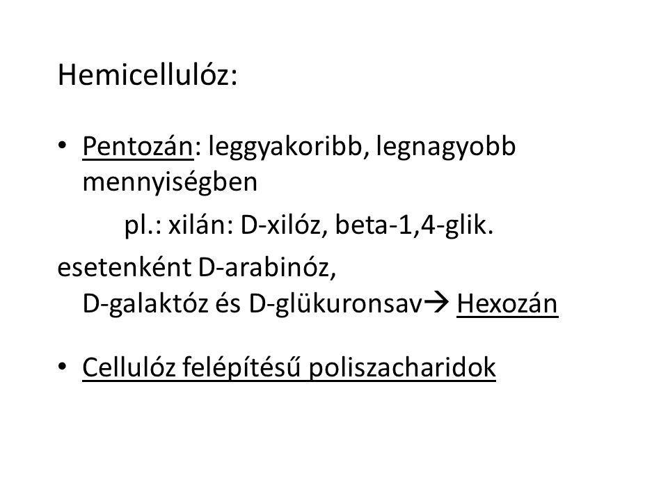 Hemicellulóz: Pentozán: leggyakoribb, legnagyobb mennyiségben pl.: xilán: D-xilóz, beta-1,4-glik.