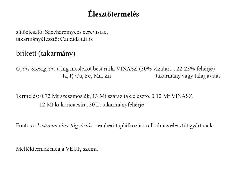 Élesztőtermelés sütőélesztő: Saccharomyces cerevisiae, takarmányélesztő: Candida utilis brikett (takarmány) Győri Szeszgyár: a híg moslékot besűrítik:
