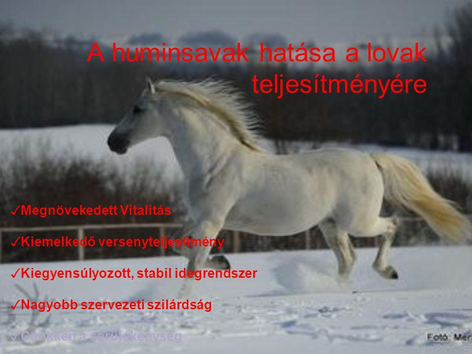 A huminsavak hatása a lovak teljesítményére ✓ Megnövekedett Vitalitás ✓ Kiemelkedő versenyteljesítmény ✓ Kiegyensúlyozott, stabil idegrendszer ✓ Nagyo