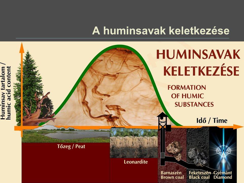 A huminsavak keletkezése és osztályozása A huminsavak az un.