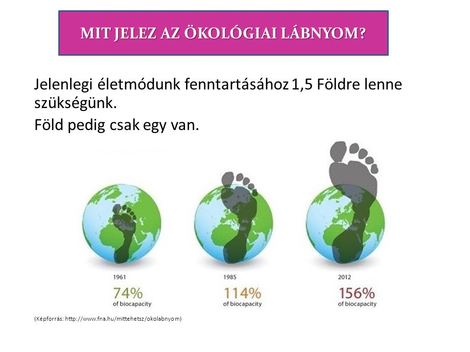 Társadalom KörnyezetGazdaság A fenntarthatóság összetevőinek, a környezetnek, a társadalomnak és a gazdaságnak az egyenlő fontosságát kifejező elterjedt ábrázolás
