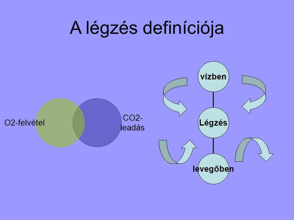 A légzés definíciója CO2- leadás O2-felvétel levegőben vízben Légzés