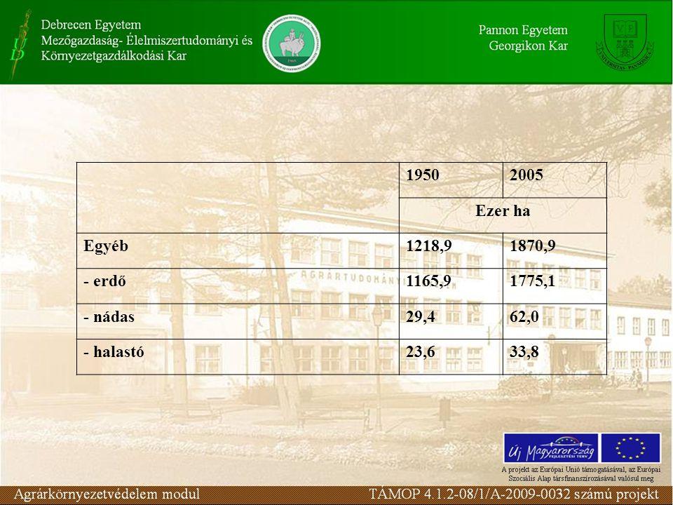 19502005 Ezer ha Egyéb1218,91870,9 - erdő1165,91775,1 - nádas29,462,0 - halastó23,633,8