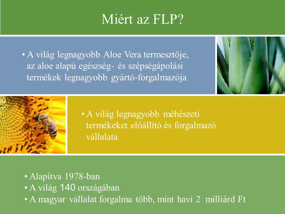 Alapítva 1978-ban A világ 140 országában A magyar vállalat forgalma több, mint havi 2 milliárd Ft Miért az FLP.