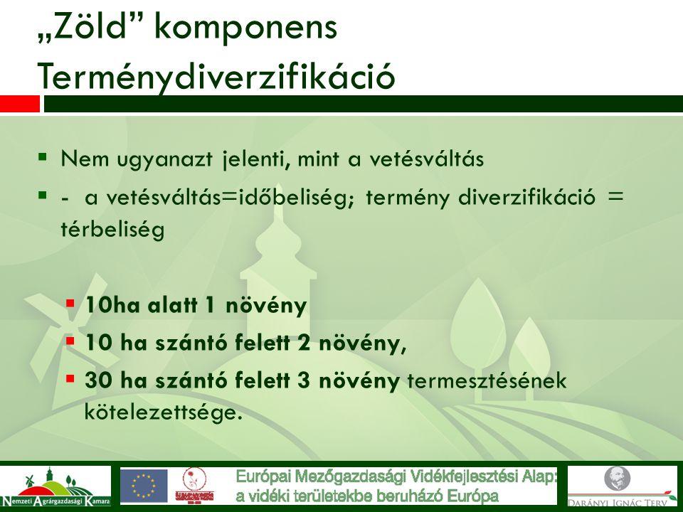 """""""Zöld"""" komponens Terménydiverzifikáció  Nem ugyanazt jelenti, mint a vetésváltás  - a vetésváltás=időbeliség; termény diverzifikáció = térbeliség """