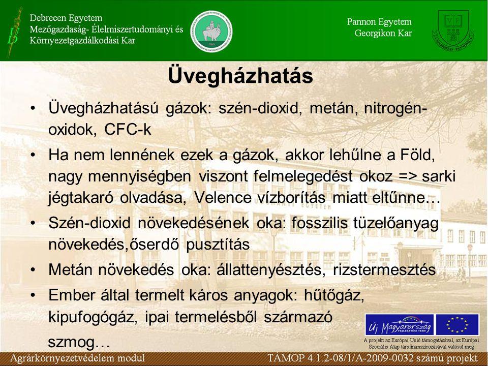 Üvegházhatás Üvegházhatású gázok: szén-dioxid, metán, nitrogén- oxidok, CFC-k Ha nem lennének ezek a gázok, akkor lehűlne a Föld, nagy mennyiségben viszont felmelegedést okoz => sarki jégtakaró olvadása, Velence vízborítás miatt eltűnne… Szén-dioxid növekedésének oka: fosszilis tüzelőanyag növekedés,őserdő pusztítás Metán növekedés oka: állattenyésztés, rizstermesztés Ember által termelt káros anyagok: hűtőgáz, kipufogógáz, ipai termelésből származó szmog…