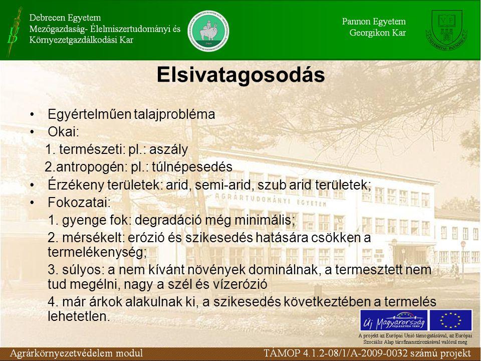 Elsivatagosodás Egyértelműen talajprobléma Okai: 1. természeti: pl.: aszály 2.antropogén: pl.: túlnépesedés Érzékeny területek: arid, semi-arid, szub