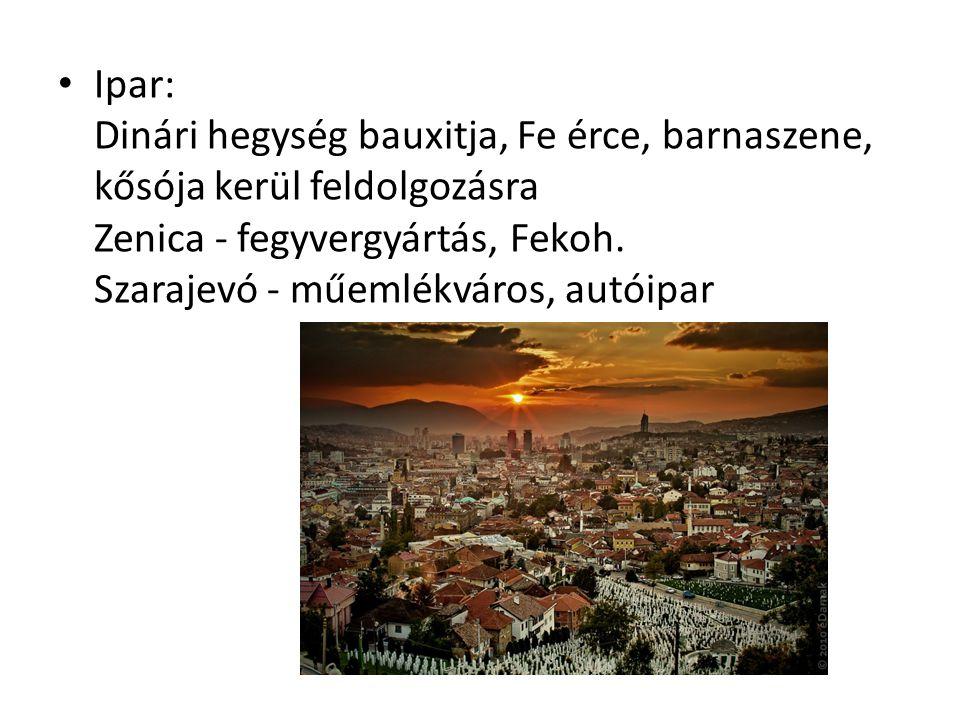 Ipar: Dinári hegység bauxitja, Fe érce, barnaszene, kősója kerül feldolgozásra Zenica - fegyvergyártás, Fekoh. Szarajevó - műemlékváros, autóipar