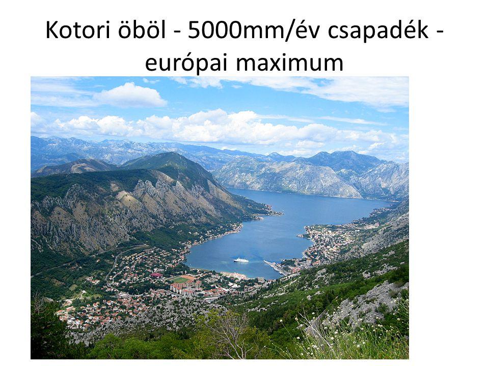Kotori öböl - 5000mm/év csapadék - európai maximum