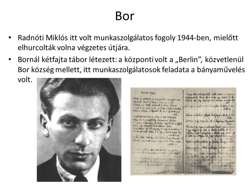 Bor Radnóti Miklós itt volt munkaszolgálatos fogoly 1944-ben, mielőtt elhurcolták volna végzetes útjára. Bornál kétfajta tábor létezett: a központi vo