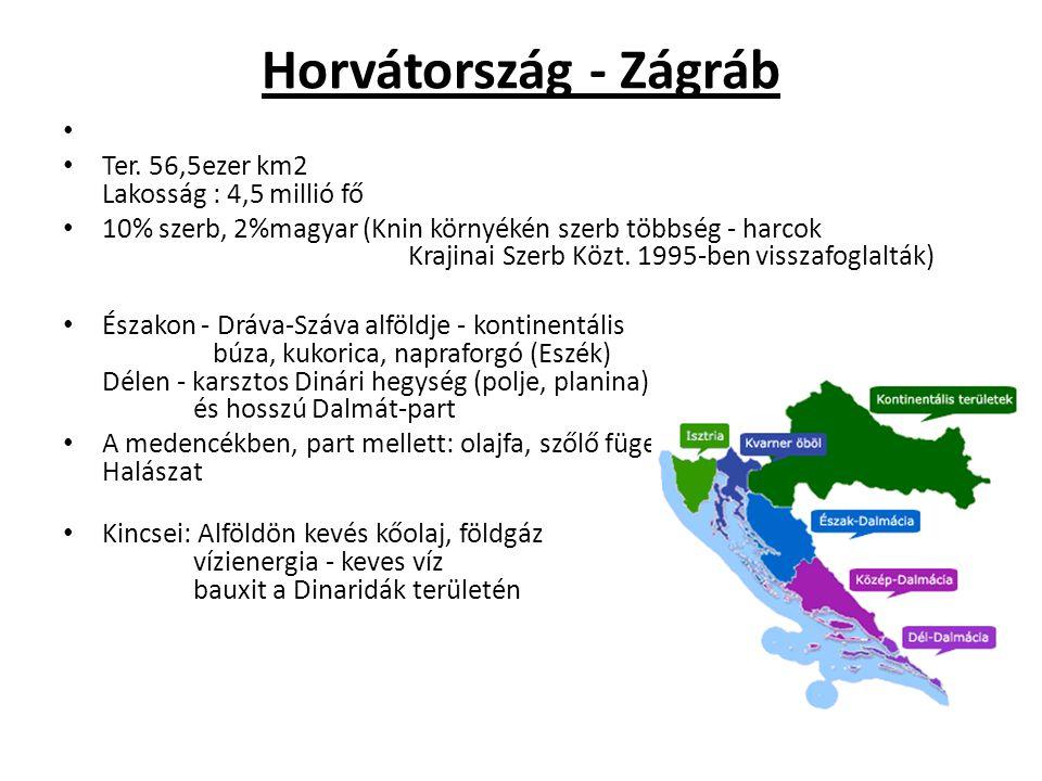Horvátország - Zágráb Ter. 56,5ezer km2 Lakosság : 4,5 millió fő 10% szerb, 2%magyar (Knin környékén szerb többség - harcok Krajinai Szerb Közt. 1995-