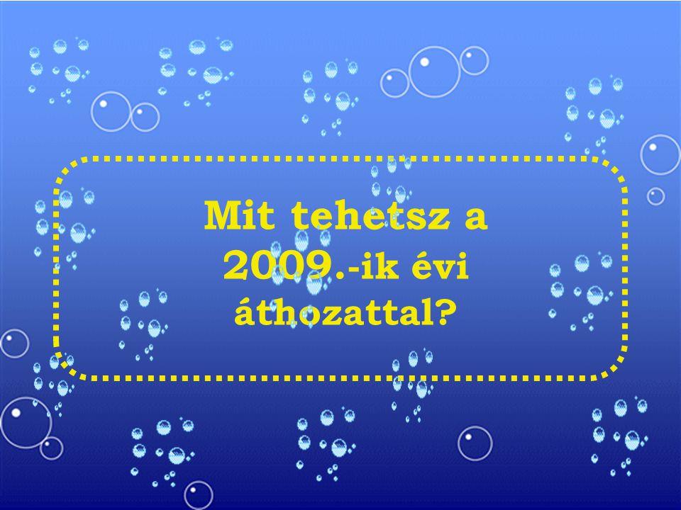 Mit tehetsz a 2009. -ik évi áthozattal?