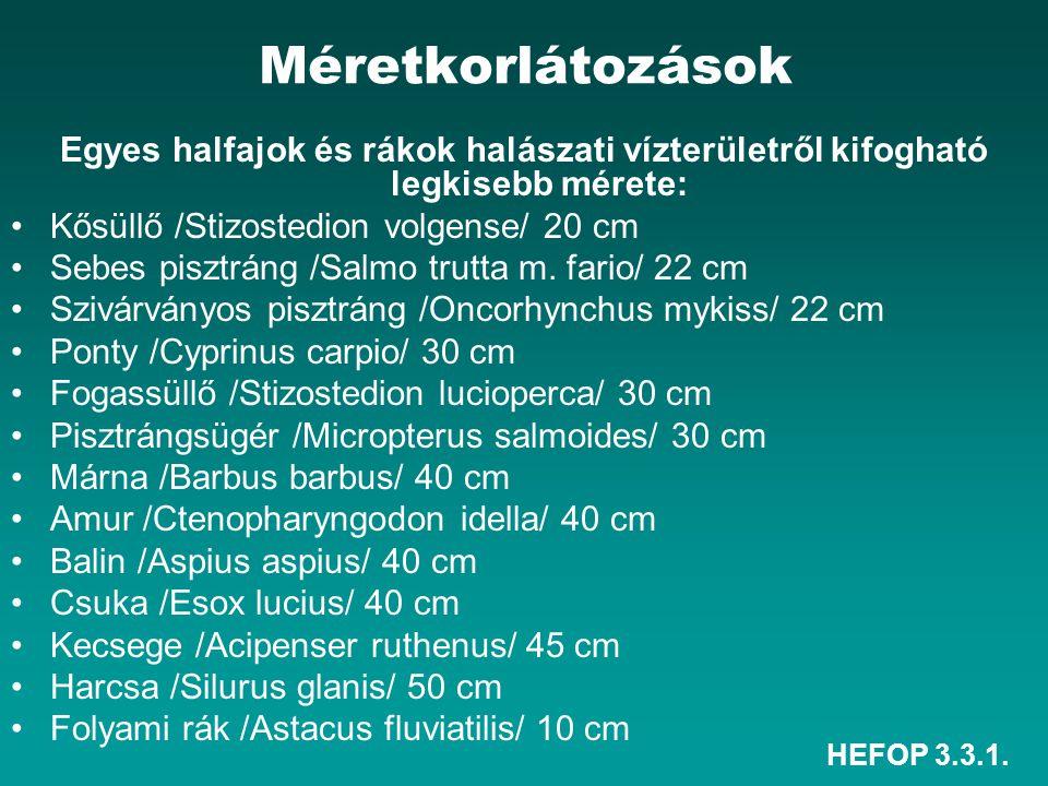 HEFOP 3.3.1. Méretkorlátozások Egyes halfajok és rákok halászati vízterületről kifogható legkisebb mérete: Kősüllő /Stizostedion volgense/ 20 cm Sebes