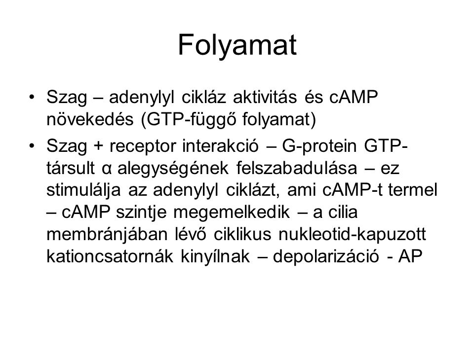 Folyamat Szag – adenylyl cikláz aktivitás és cAMP növekedés (GTP-függő folyamat) Szag + receptor interakció – G-protein GTP- társult α alegységének felszabadulása – ez stimulálja az adenylyl ciklázt, ami cAMP-t termel – cAMP szintje megemelkedik – a cilia membránjában lévő ciklikus nukleotid-kapuzott kationcsatornák kinyílnak – depolarizáció - AP