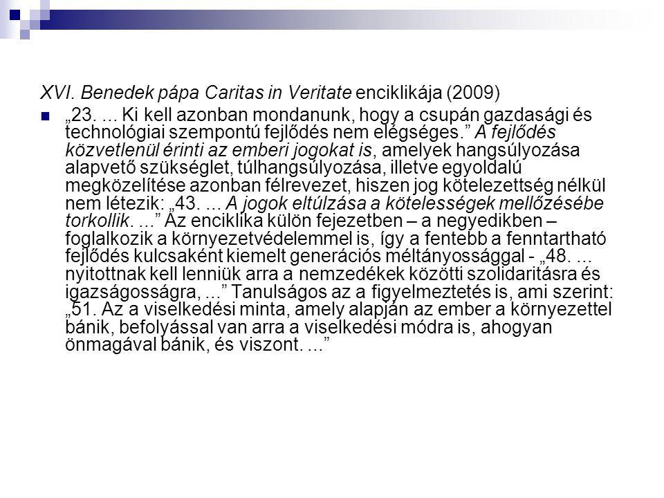 """XVI.Benedek pápa Caritas in Veritate enciklikája (2009) """"23...."""